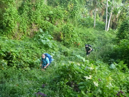 Kokoda-Adventure-Trek-117645
