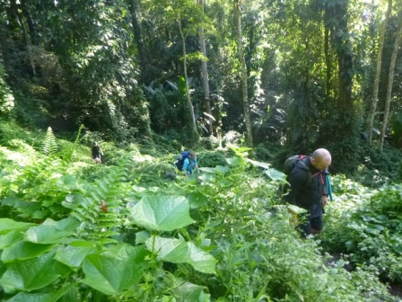 Kokoda-Adventure-Trek-117650