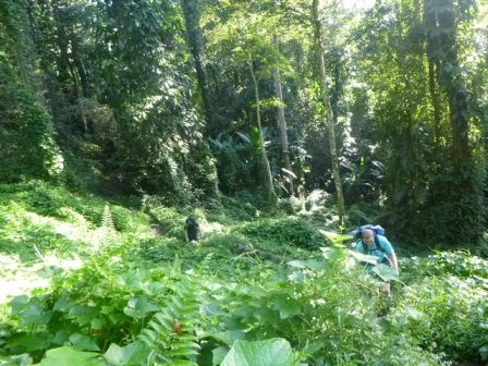 Kokoda-Adventure-Trek-117651