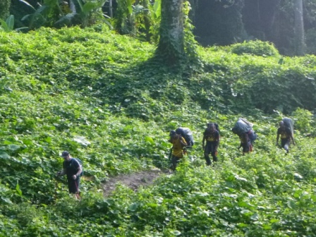 Kokoda-Adventure-Trek-117660