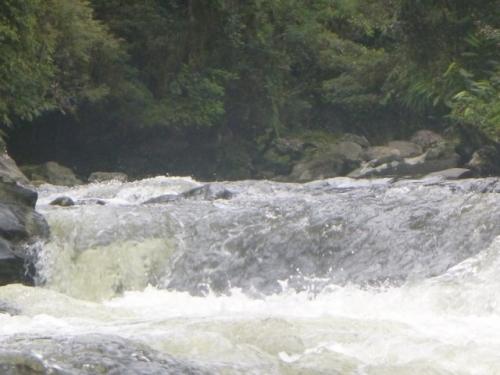Kokoda-Trekking-Trek-1170-175